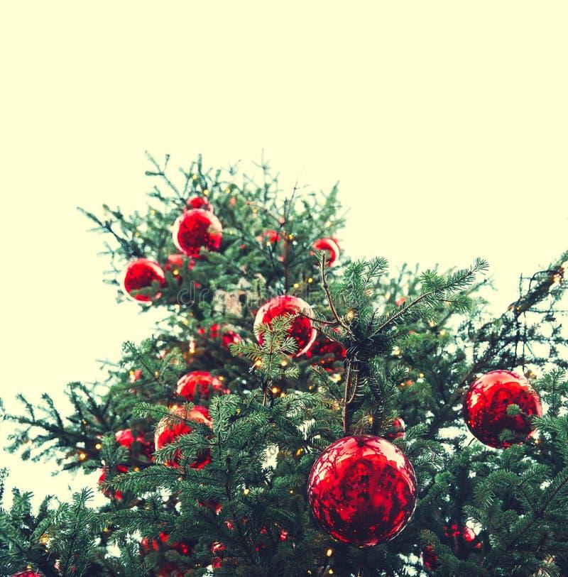 Bolas rojas de la Navidad que cuelgan en un árbol de navidad imagen de archivo libre de regalías