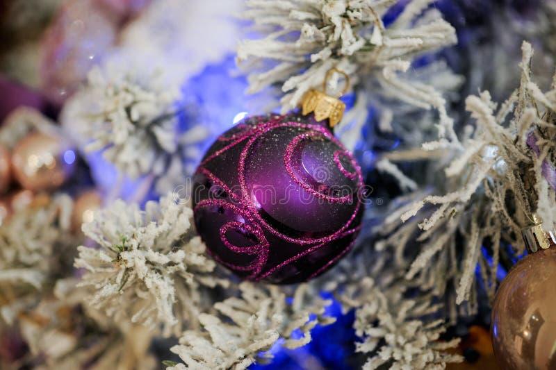 Bolas roxas do Natal que penduram na árvore fotos de stock