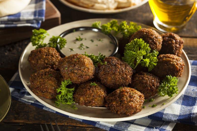 Bolas saudáveis do Falafel do vegetariano foto de stock royalty free