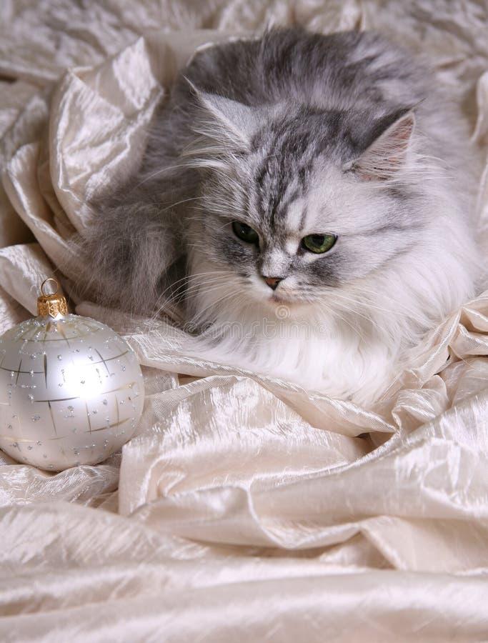 Bolas y gato de la Navidad imagen de archivo