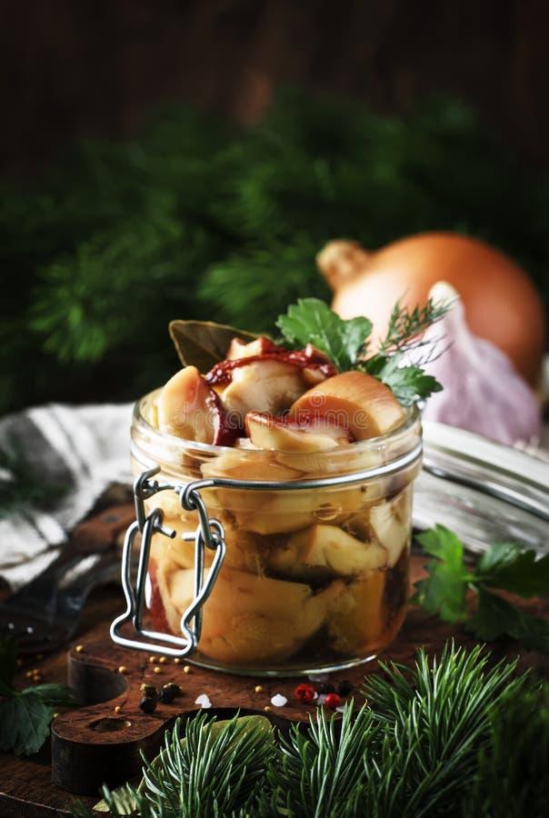 Boletus bianco salato o marinato dei funghi della foresta in barattolo con le spezie e le erbe, cucinanti alimento o d'inscatolam fotografia stock libera da diritti
