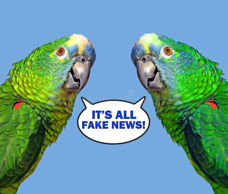 Bolha do discurso do papagaio que diz a notícia falsificada imagens de stock royalty free