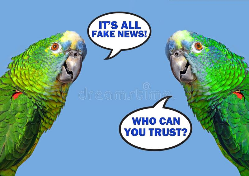 Bolha dobro do discurso do papagaio que diz a notícia falsificada foto de stock