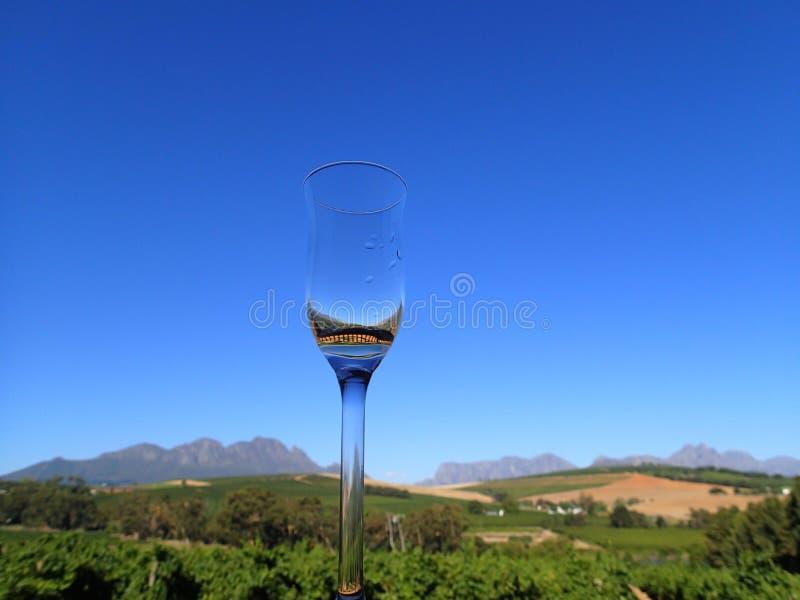 Bolhas em Stellenbosch foto de stock royalty free