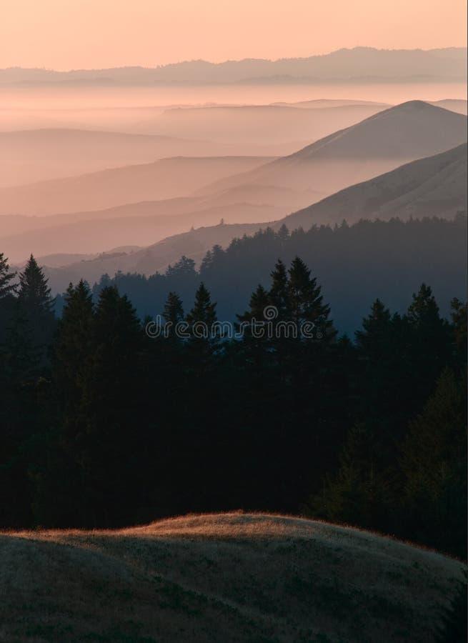 Bolinas Ridge, Calfiornia royaltyfri bild