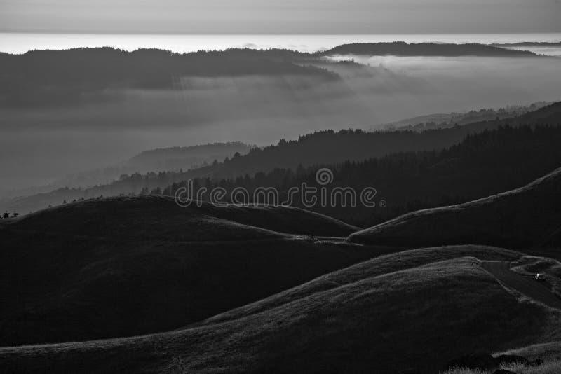 Bolinas Ridge, Calfiornia. Bolinas Ridge is a north-south ridge in southwestern Marin County, California stock photos