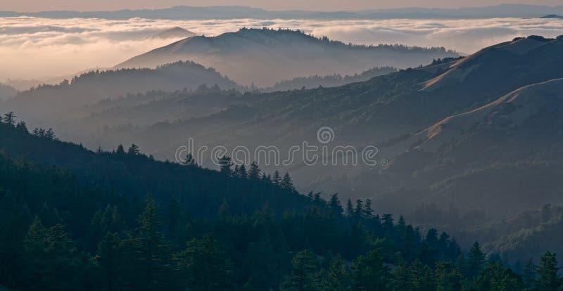 Bolinas Ridge, Calfiornia. Bolinas Ridge is a north-south ridge in southwestern Marin County, California royalty free stock image