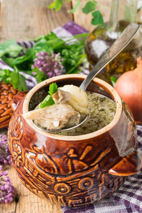 Bolinhas de massa caseiros com os cogumelos cozidos em um potenciômetro cerâmico no forno foto de stock royalty free