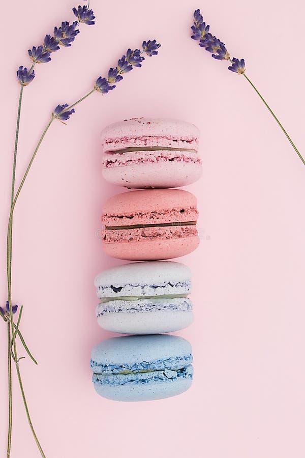 Bolinhos de amêndoa pasteis bonitos no fundo cor-de-rosa agradável com flores de uma alfazema foto de stock