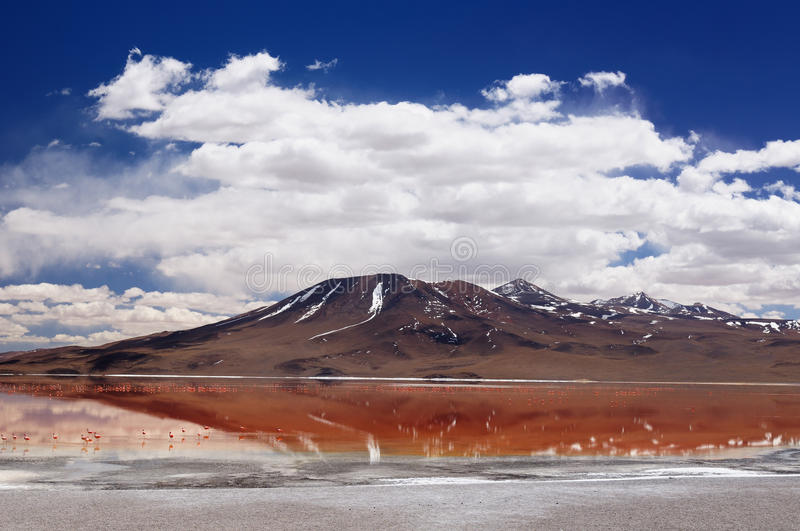 Bolivia - Eduardo Avaroa National Park. Bolivia, the most beautifull Andes in South America. The surreal landscape is nearly treeless, punctuated by gentle hills stock image