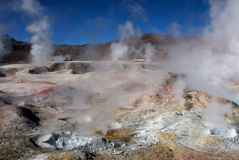 bolivia geyser arkivfoton
