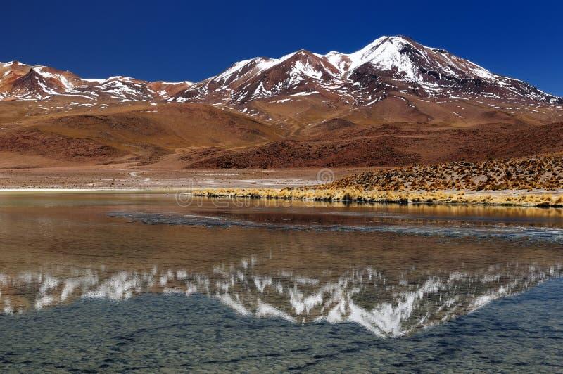 Bolivia, la mayoría del beautifull los Andes en América foto de archivo