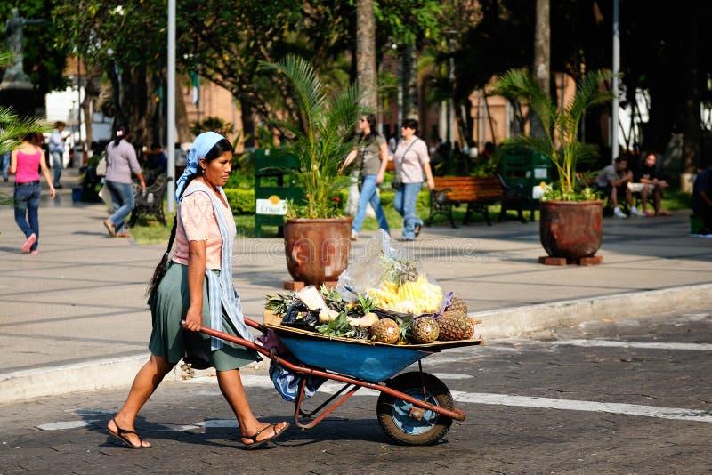 Boliviaanse mensen die vruchten op stadsstraten verkopen stock foto