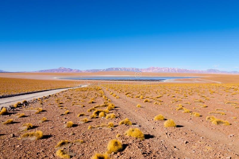 Bolivian lagoon view,Bolivia. Kollpa Kkota lagoon view. Collpa Laguna royalty free stock image