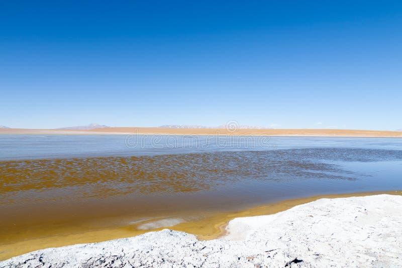 Bolivian lagoon view,Bolivia. Kollpa Kkota lagoon view. Collpa Laguna stock images
