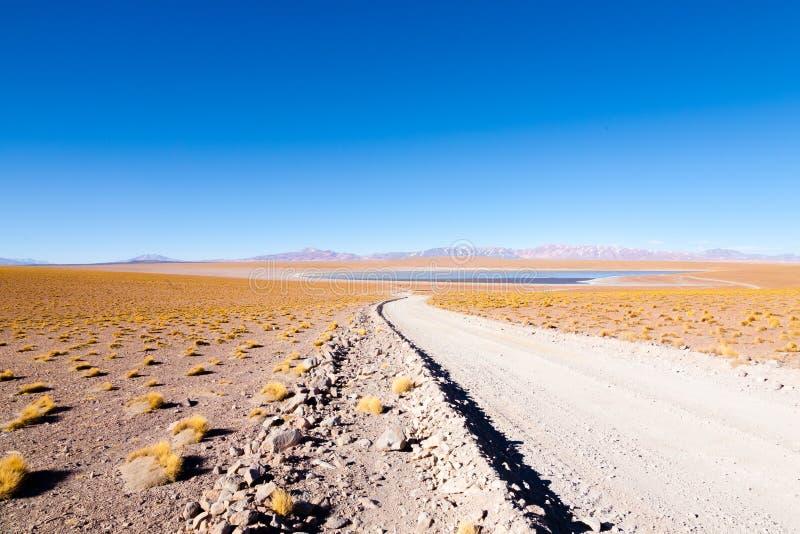 Bolivian lagoon view,Bolivia. Kollpa Kkota lagoon view. Collpa Laguna stock photo