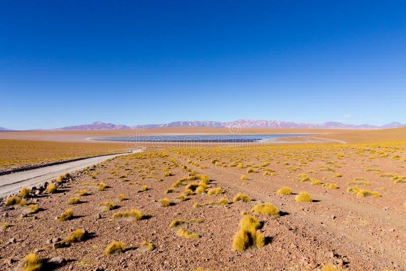 Bolivian lagoon view,Bolivia. Kollpa Kkota lagoon view. Collpa Laguna royalty free stock photo