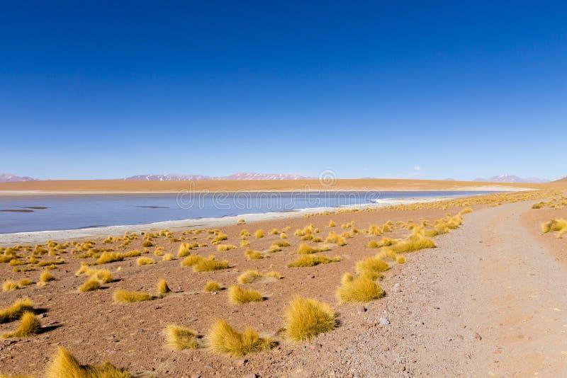 Bolivian lagoon view,Bolivia. Kollpa Kkota lagoon view. Collpa Laguna royalty free stock photos