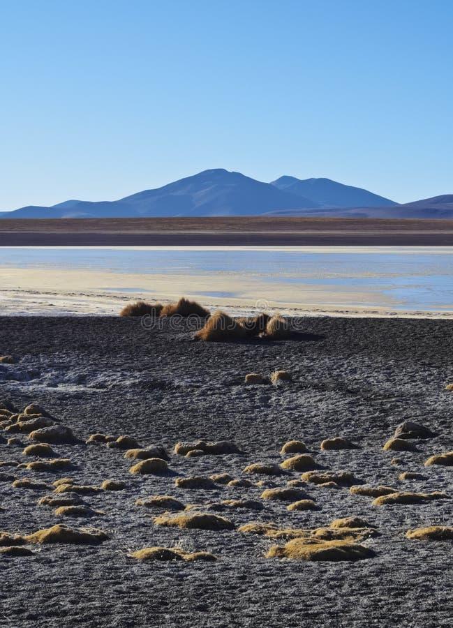 Bolivian Landscape royalty free stock photography