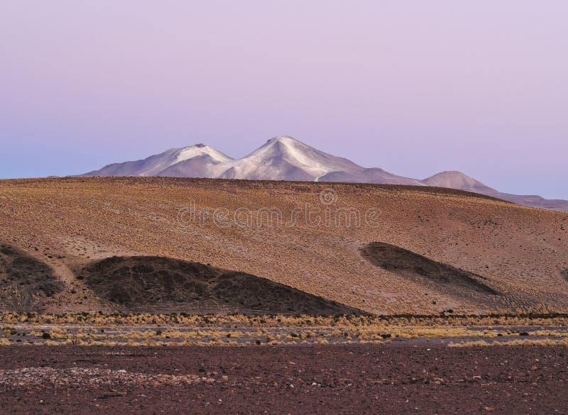 bolivian liggande arkivbild