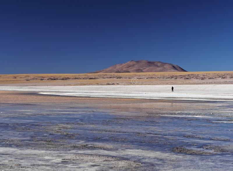 bolivian liggande arkivfoton