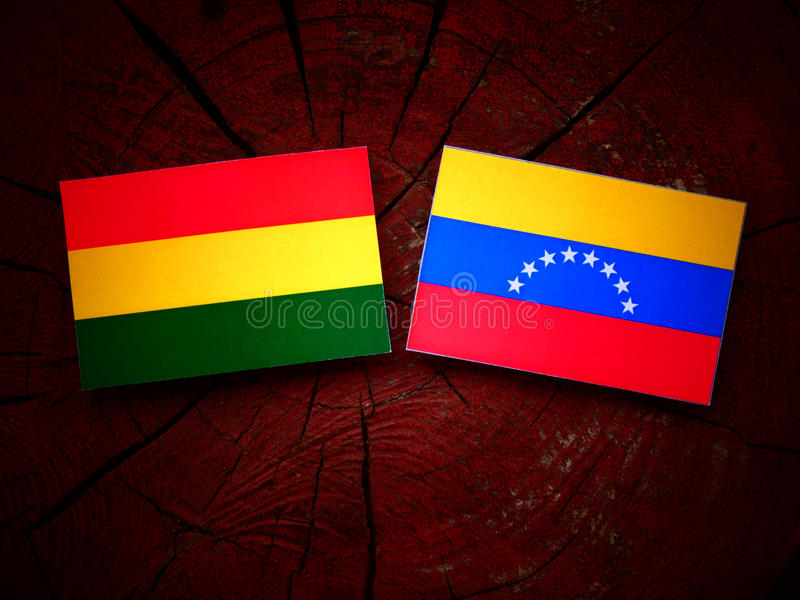 bolivianisch lizenzfreies stockbild