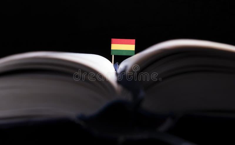 Download Bolivianische Flagge Mitten In Dem Buch Stockbild - Bild von wissen, schwarzes: 96934865