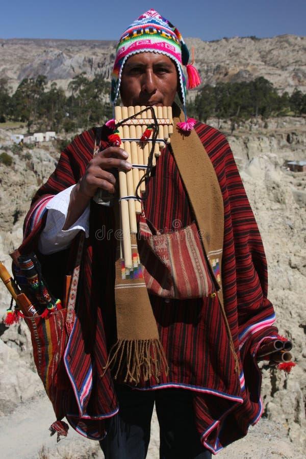 Bolivianischer Musiker stockbilder