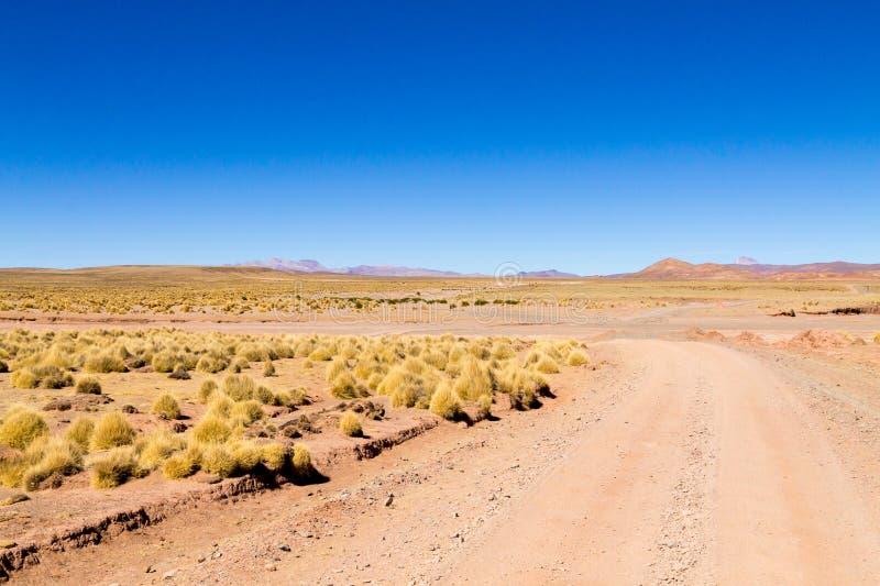 Boliviansk grusvägsikt, Bolivia royaltyfri bild