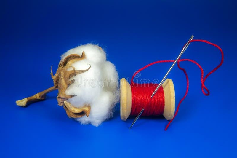 Boll de algodão com bobina de fio vermelho vivo imagens de stock royalty free