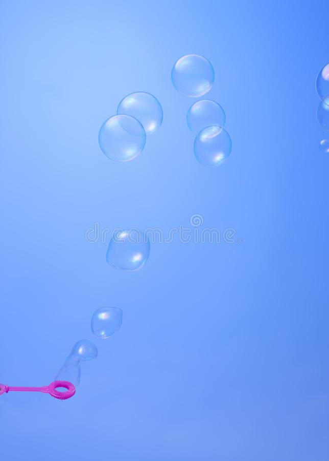 Bolla della minestra contro bello fondo blu fotografia stock libera da diritti