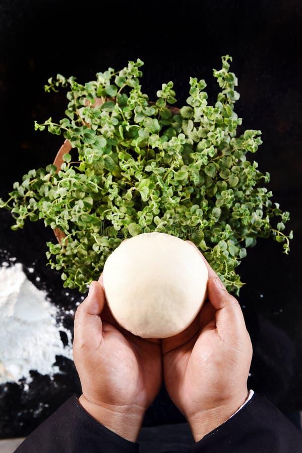 bollar av ny pizzadeg i hand- och oreganoväxter royaltyfri bild