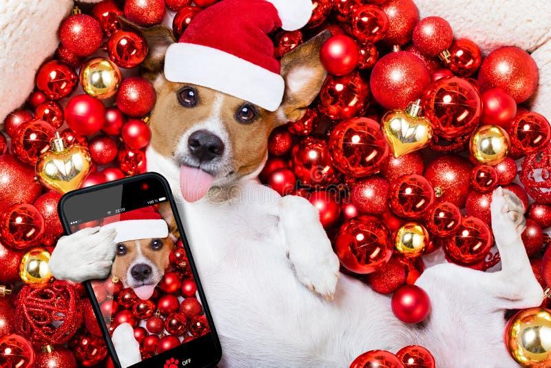 Bollar för för julSanta Claus hund och xmas som bakgrund arkivbild