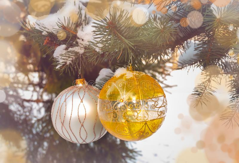 Bollar för gul och vit jul som hänger på trädfilial royaltyfria bilder