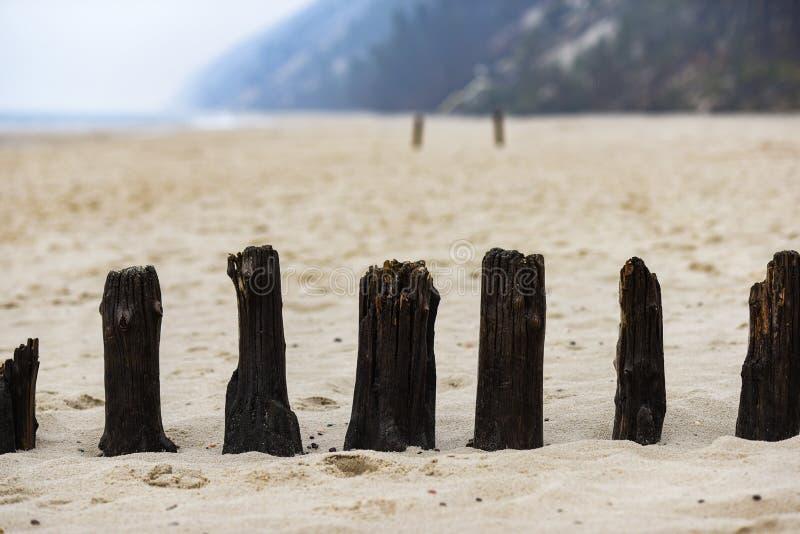 Bollar på den gamla pir som sticker fram på stranden vid Östersjön royaltyfria bilder