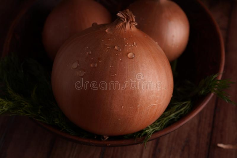 Bollen van ui en dille in kom royalty-vrije stock afbeelding