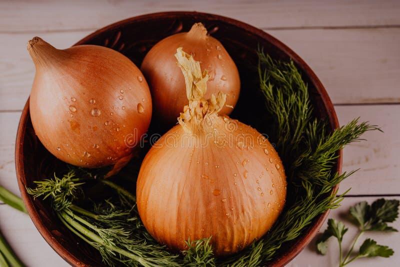 Bollen van ui en dille in kom stock afbeelding