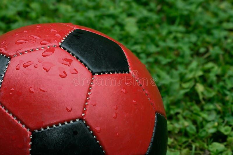 Download Bollfotboll fotografering för bildbyråer. Bild av droppar - 31293