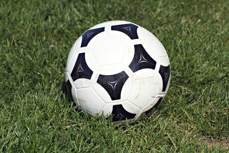 Download Bollgräsfotboll fotografering för bildbyråer. Bild av detalj - 19787449