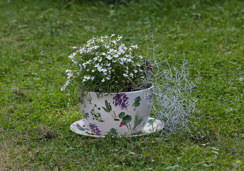 Bollitore originale dei vasi del giardino fotografia stock for Vasi erba