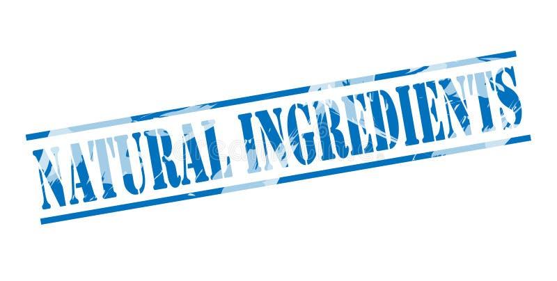 Bollo blu degli ingredienti naturali illustrazione di stock
