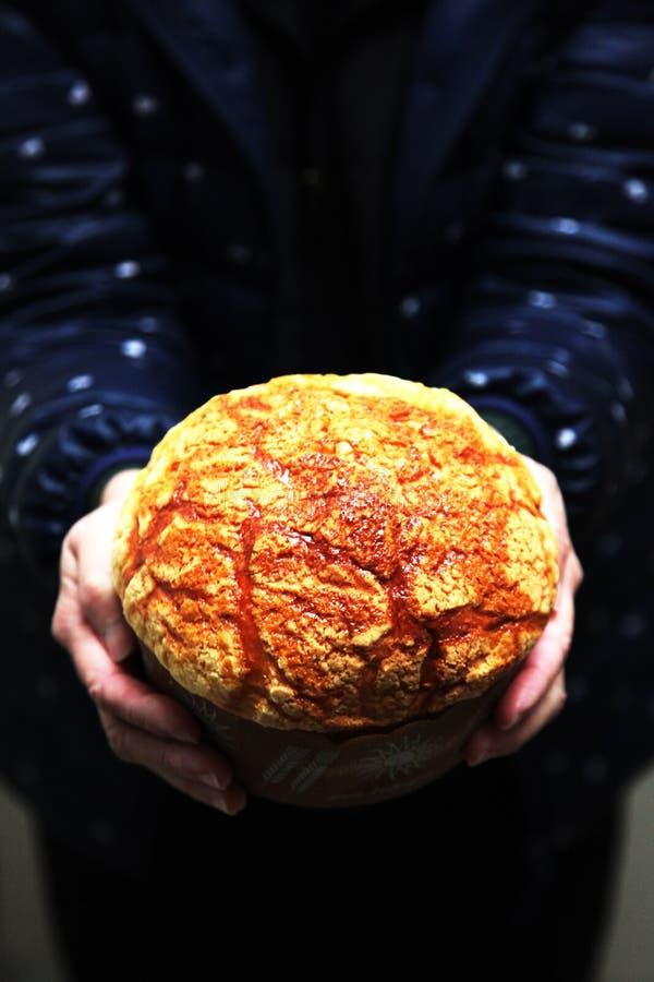 Bollo cocido grande del queso fotografía de archivo libre de regalías