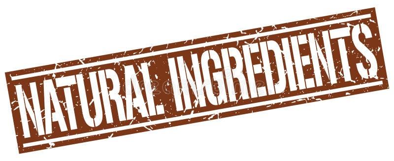 Bollo naturale degli ingredienti illustrazione di stock