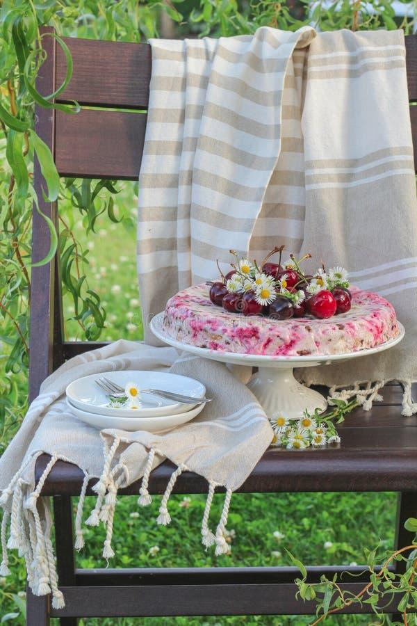Bolo caseiro com as cerejas na parte superior em um jardim verde do verão imagens de stock