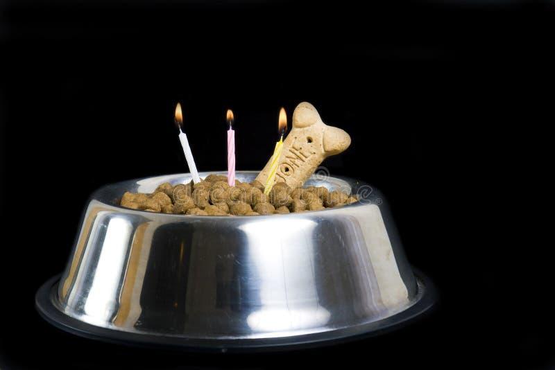 Bolo de aniversário do cão imagem de stock royalty free