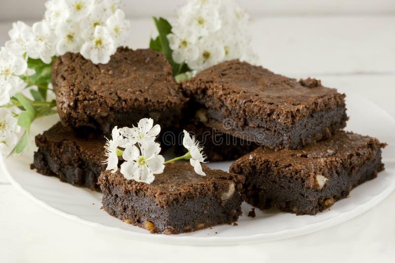 Bolo de chocolate delicioso em uma placa branca decorada com uma flor Cozimento caseiro Torta americana tradicional Torta da noz- fotografia de stock royalty free