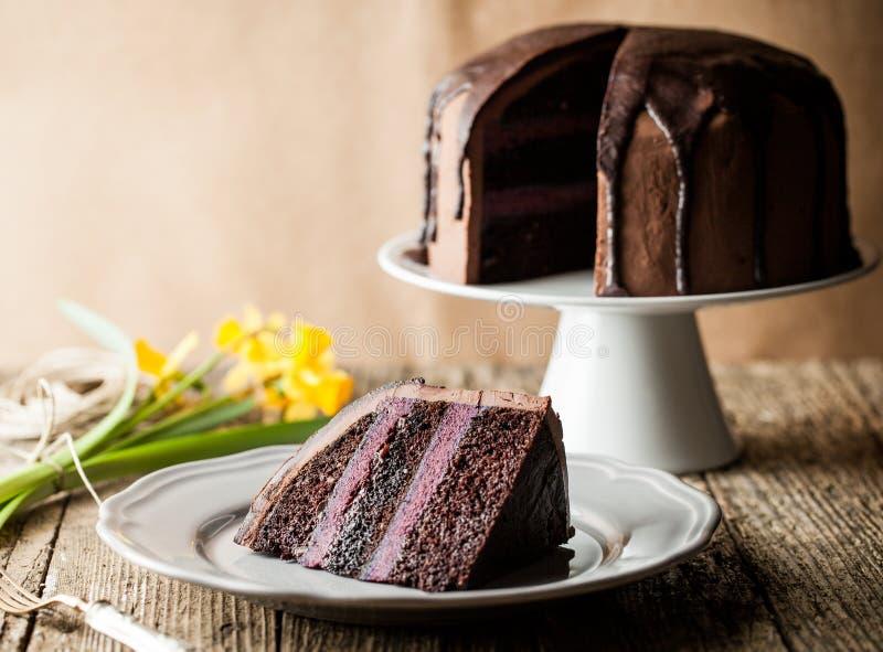 Bolo de chocolate do vintage com creme do mirtilo fotografia de stock royalty free