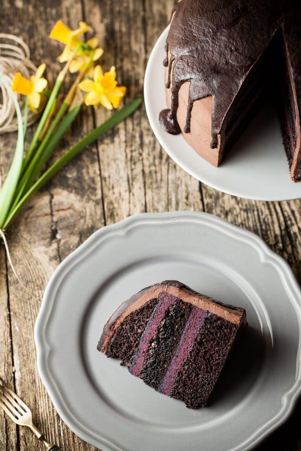 Bolo de chocolate do vintage com creme do mirtilo imagem de stock