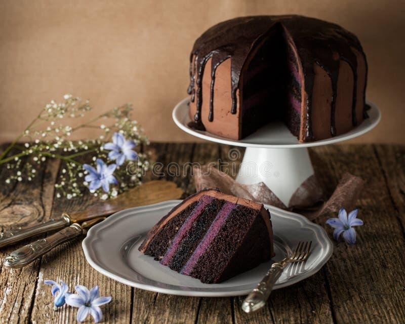 Bolo de chocolate do vintage com creme do mirtilo fotografia de stock