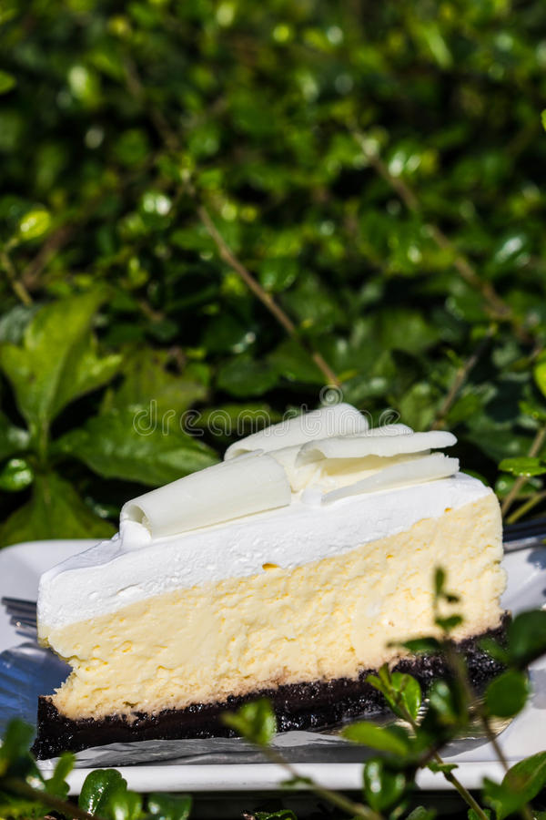 Bolo de queijo branco do chocolate fotografia de stock royalty free